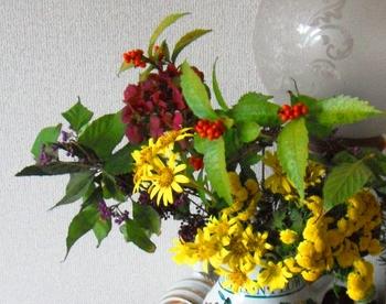 121125庭の花アップ.JPG